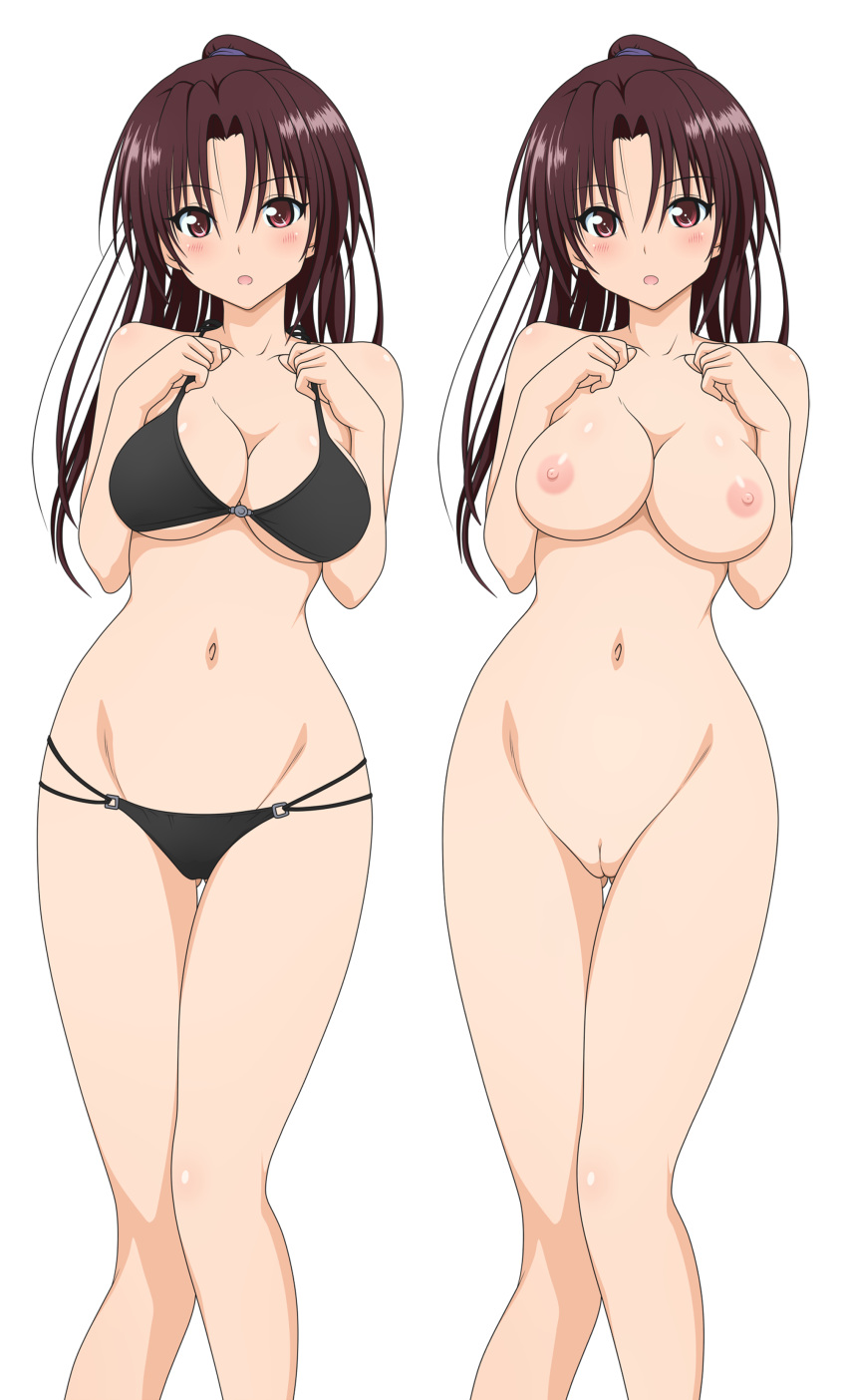 breast love ru expansion to Sonic x rouge and topaz